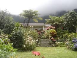 Case Et Jardin Creole Dans Les Hauts Ile De La Reunion Pinterest
