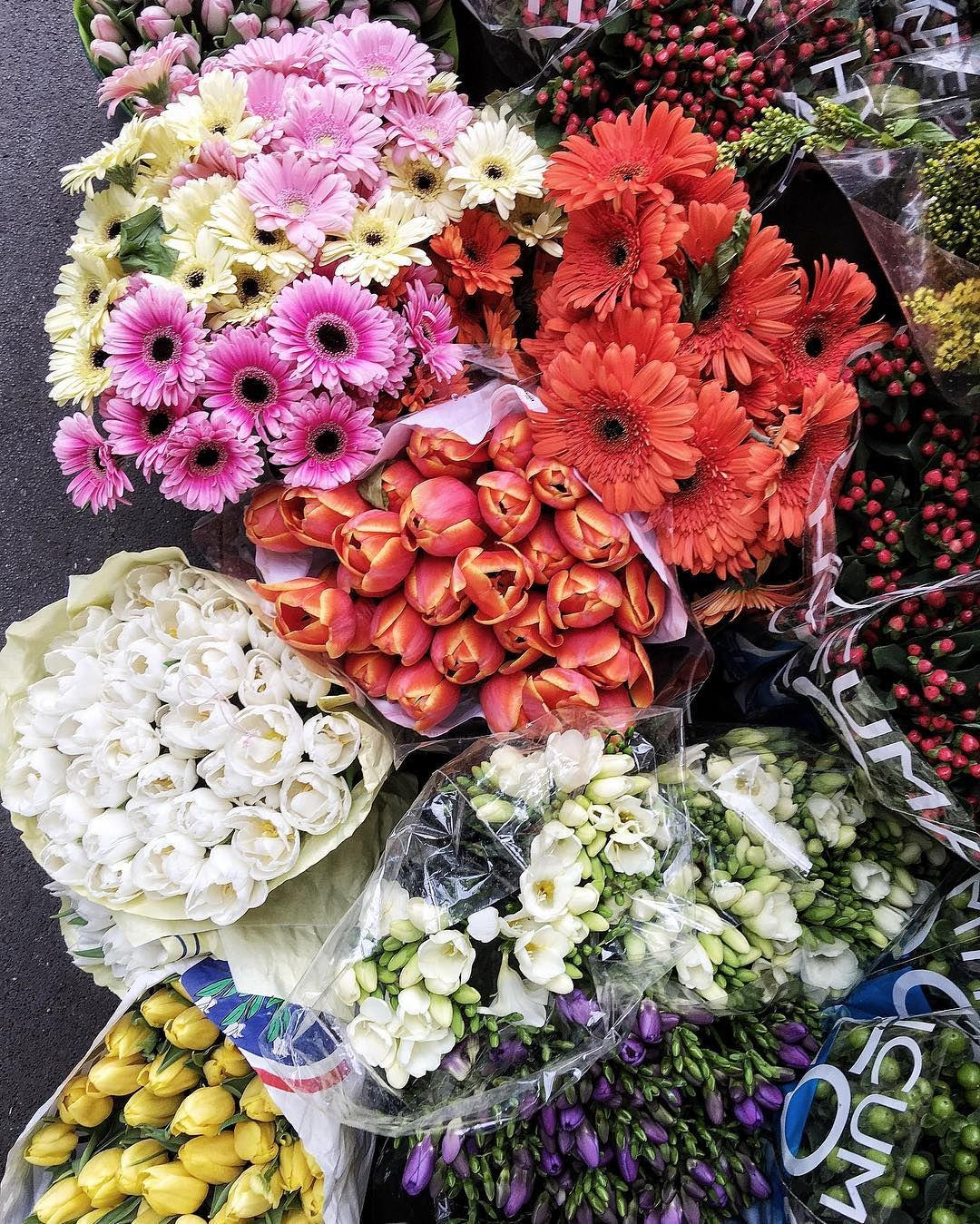 The sun to a rainy Sunday flowers happysunday by