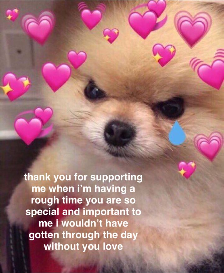 Thank You For Making Me Feel Better Cute Memes Cute Love Memes Wholesome Memes