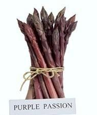 Asparagus Purple Passion D210ASP (Purple) 25 Hybrid Seeds by David's Garden Seeds David's Garden Seeds http://www.amazon.com/dp/B01BW1PHIK/ref=cm_sw_r_pi_dp_eD1-wb0NG8EC3