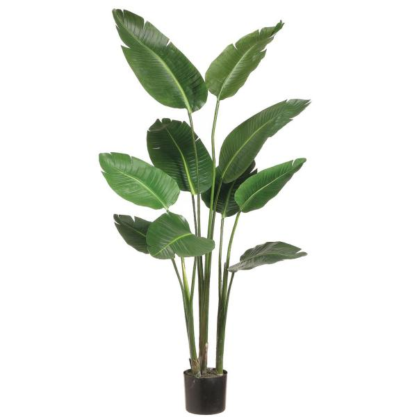 Park Place Home 5 Ft Bird Of Paradise Plant In Plastic Pot Lzb605 Gr The Home Depot In 2020 Birds Of Paradise Plant Artificial Plants And Trees Faux Plants