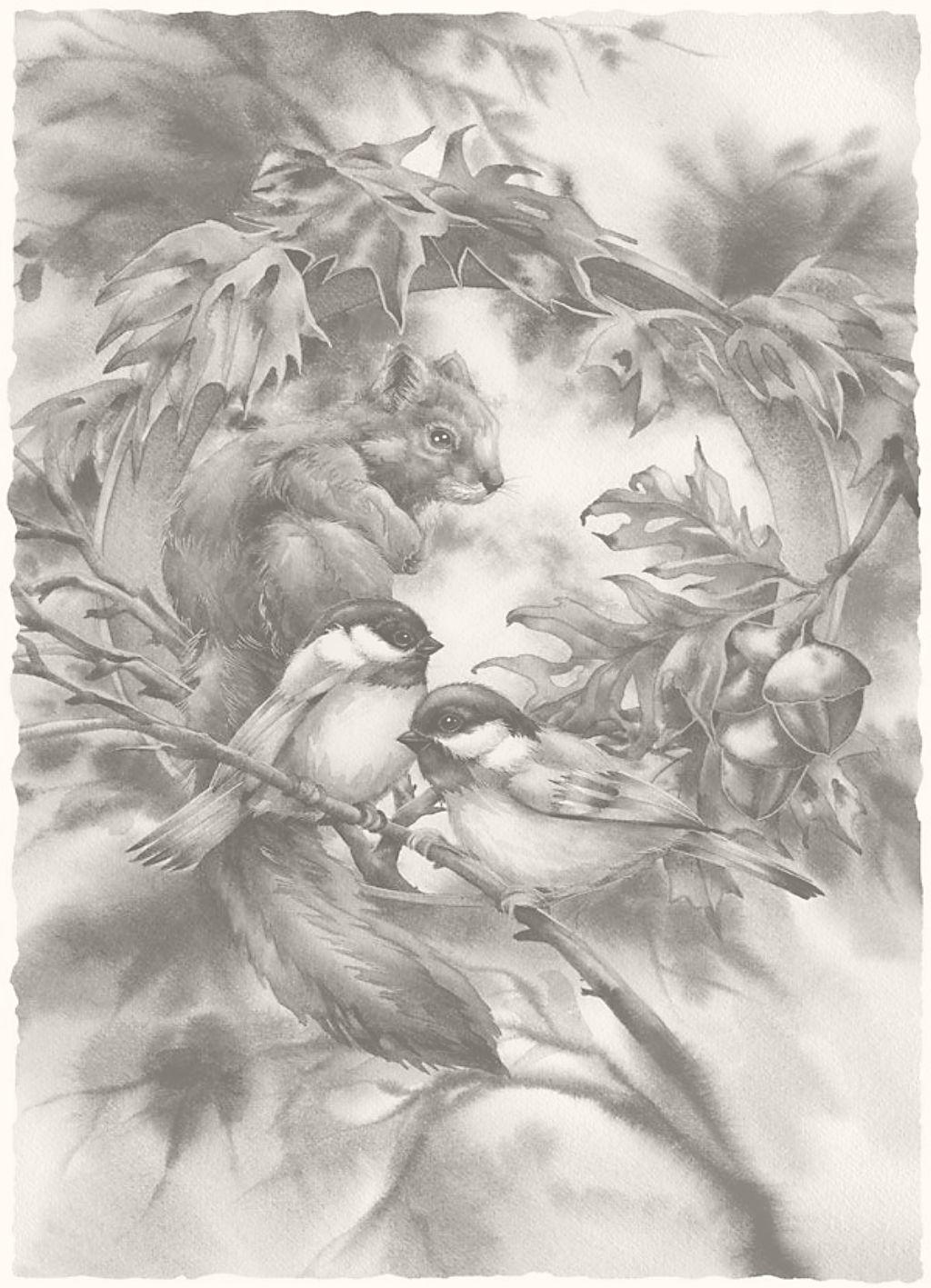 Alle Zwart Wit Platen Zijn Goed Uit De Printen Op 13 18 Cm Dieren Kleurplaten Vogels Tekenen Aquarellen