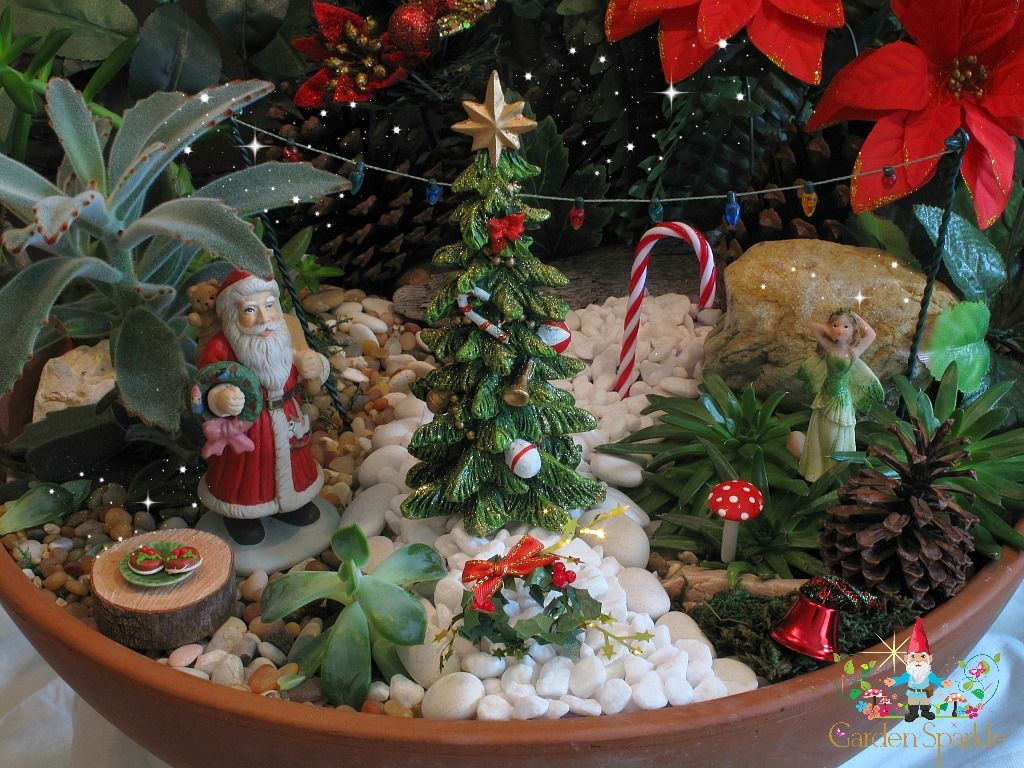 christmas fairy garden in a pot 2013