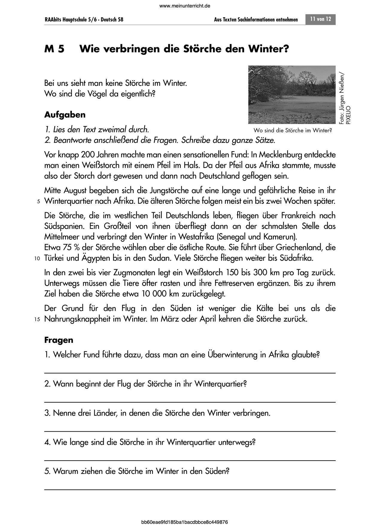 Sachtexte   Arbeitsblätter für Deutsch   meinUnterricht   Deutsch ...