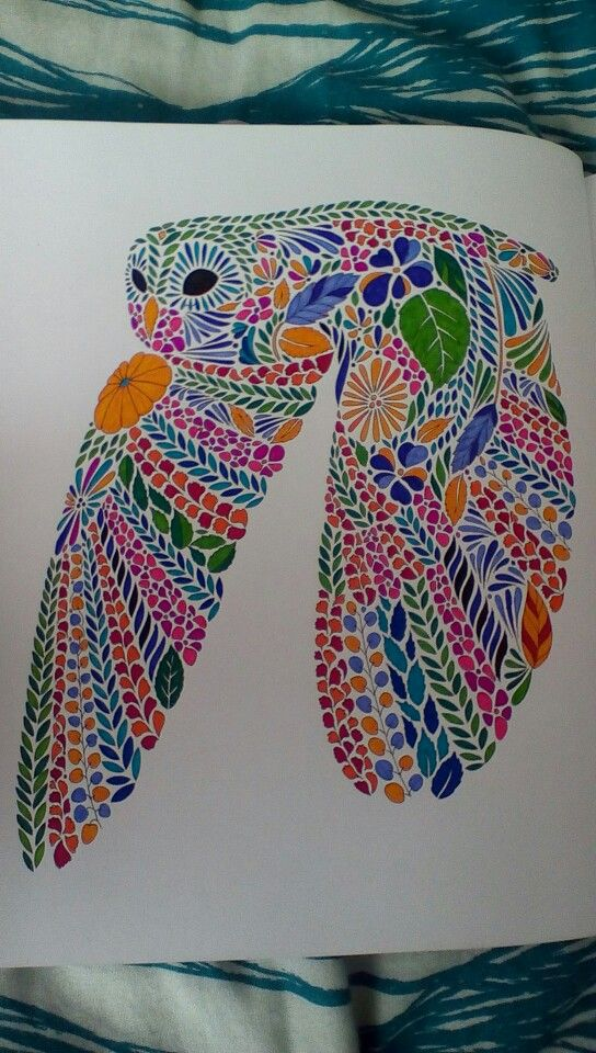Millie Marotta S Animal Kingdom Owl Animal Kingdom Colouring Book Millie Marotta Animal Kingdom Millie Marotta Coloring Book
