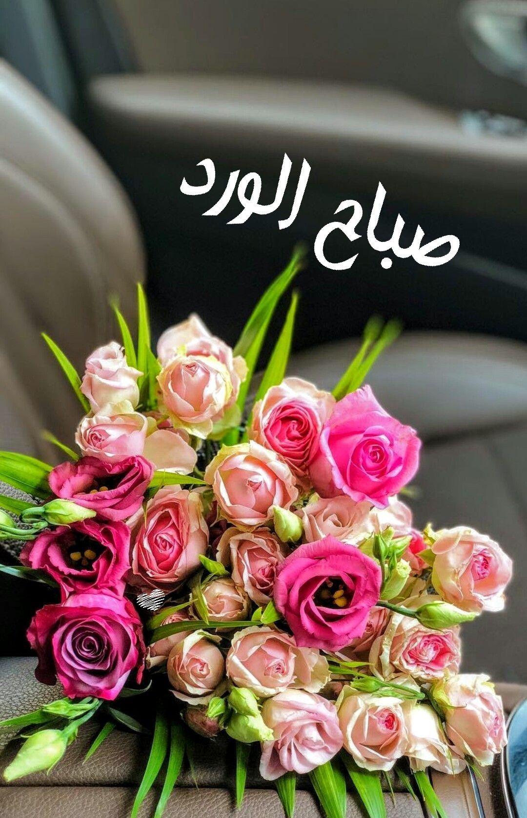 صباح الورد (With images) Hanging flowers, Floral
