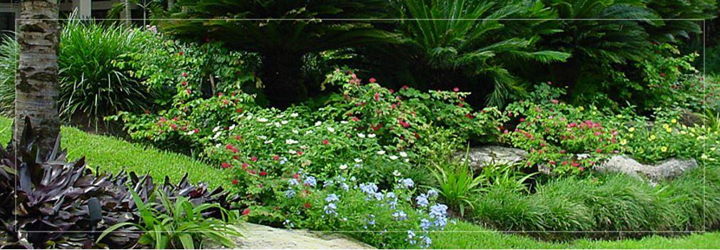 Premier Designs Mistick Construction Website: Premier Landscape Design Company In South Florida