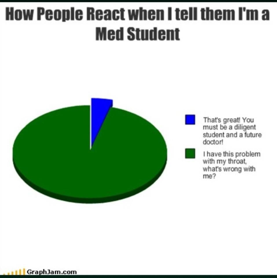 Funny Pie Charts About School Topsimages