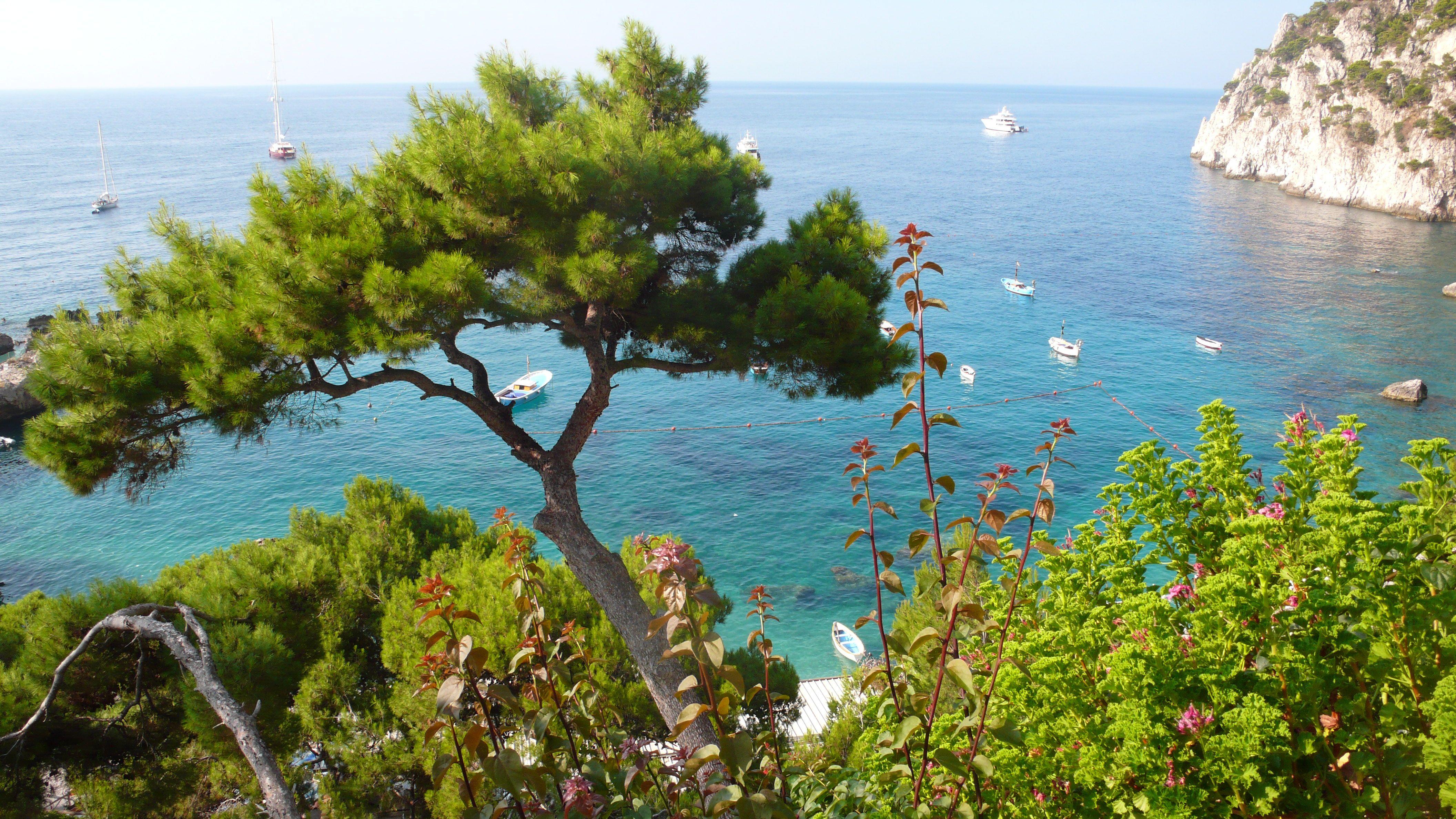 Marina Grande, Insel Capri, Golf von Neapel, Kampanien ... |Capri Italy Golf