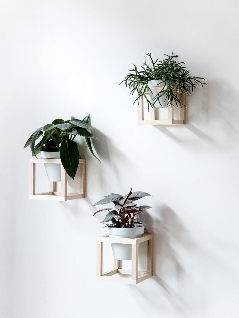 Hanging Planters You Can Make Yourself is part of Diy hanging planter, Creative wall decor, Hanging plant holder, Diy hanging, Plant holders, Hanging plants - Because we know you want plants EVERYWHERE  (We do, too )