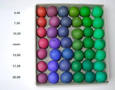 Vijf kleuren - bij verschillende daglichtkwaliteiten vastgelegd - van ochtendlicht tot avondschemer.
