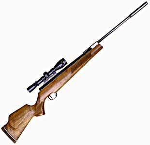 Beeman Crow Magnum/Theoben Eliminator – Part 1 | Air gun blog