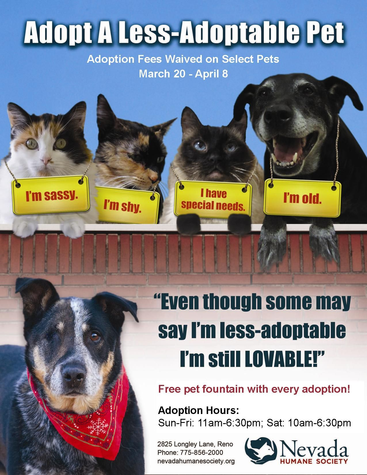 We Love All Pets The Nhs Less Adoptable Adoption Promotion March 20 April 8 2012 Pet Adoption Adoption Animal Free