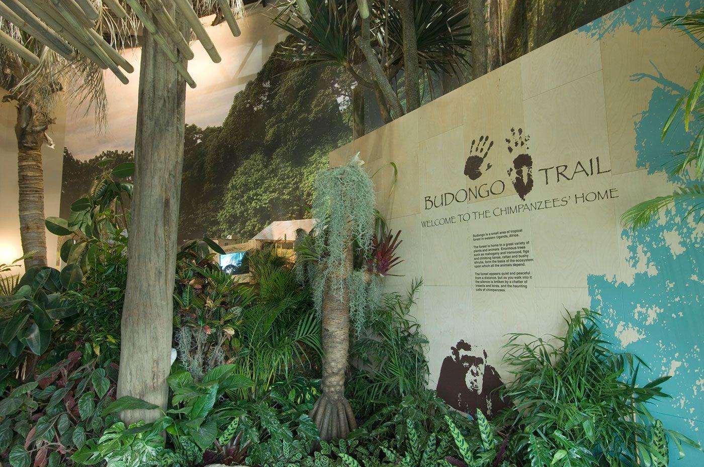Budongo Trail at Edinburgh Zoo