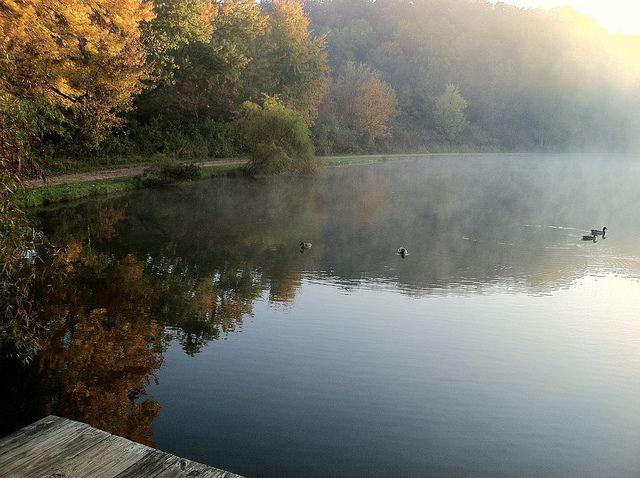 Little Turtle Pond Firestone Metropark Park Trails Cuyahoga Falls Turtle Pond