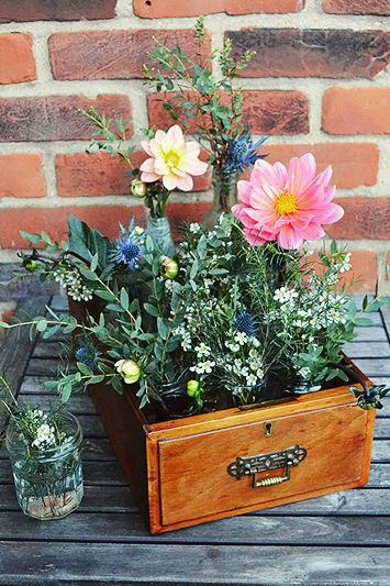 What a different way to display plants flowers in a drawer - love it