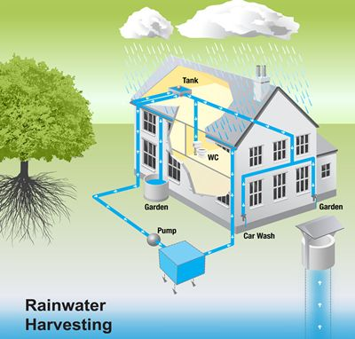 The Rainwater Harvesting System In Action Rainwater