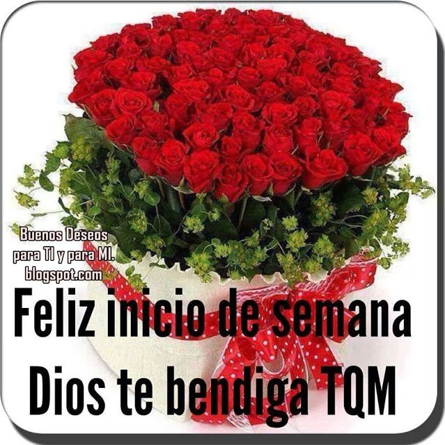 Feliz Inicio De Semana Dios Te Bendiga Tqm Imagenes De Rosas