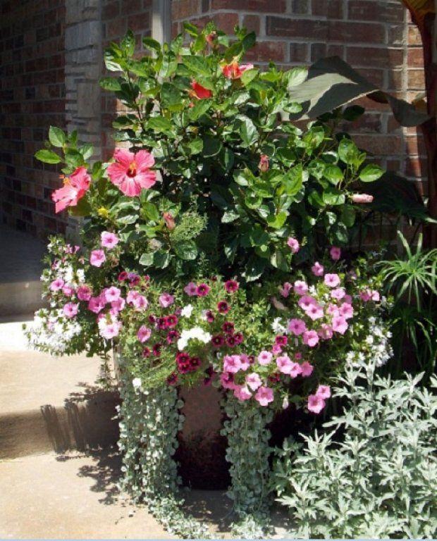 diseño de jardines con macetas - buscar con google | mi jardín