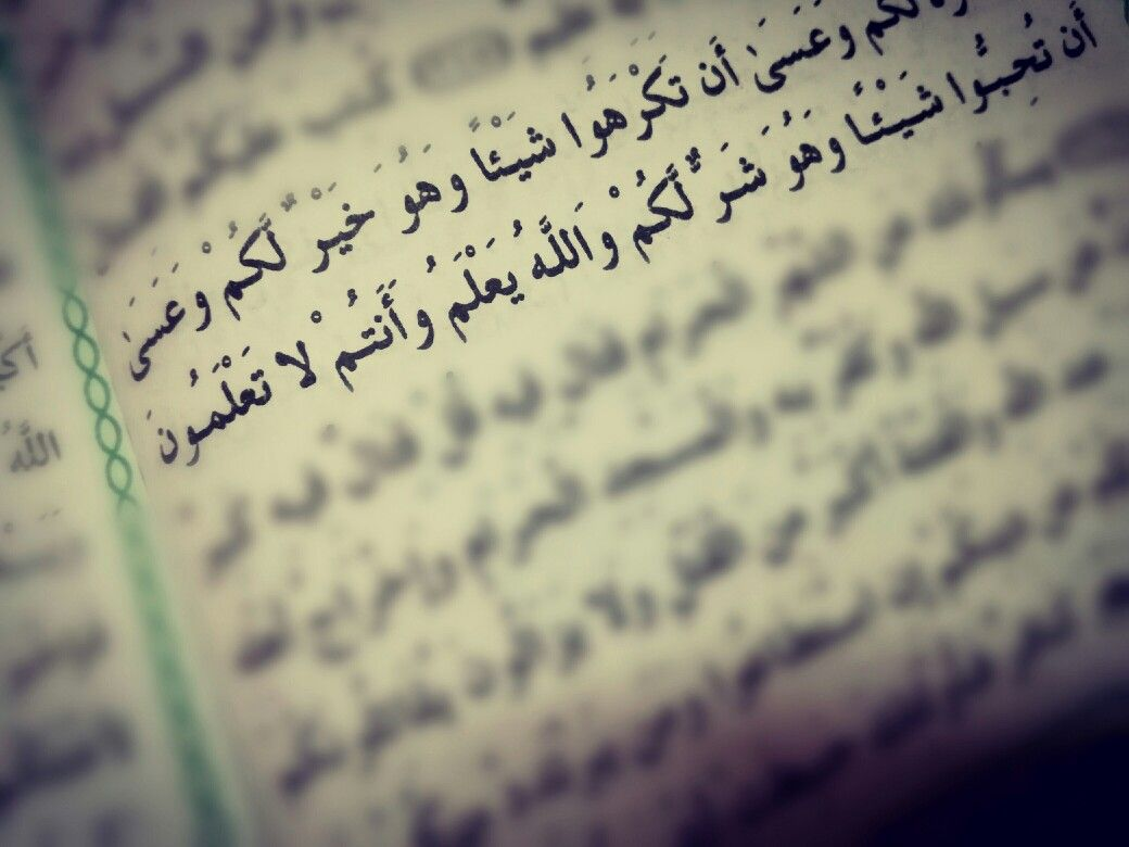 وعسى ان تكرهوا شيئا وهو خير لكم وعسى ان تحبوا شيئا وهو شر لكم والله يعلم وانتم لا تعلمون Words Quotes Islamic Quotes Quotes