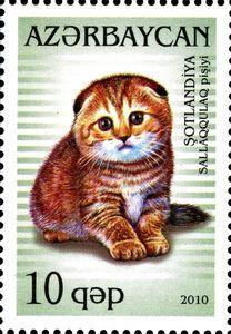 Scottish Fold Felis Silvestris Catus Postage Stamp Art Vintage Postage Stamps Cat Stamp