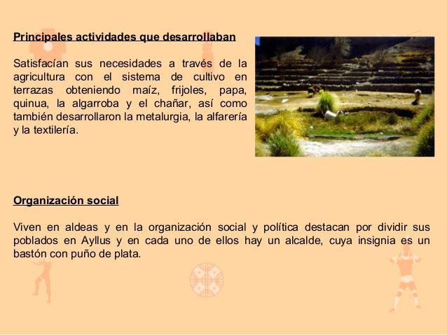 Cultura Atacamena Sistema De Cultivo Organizacion Social Cultura