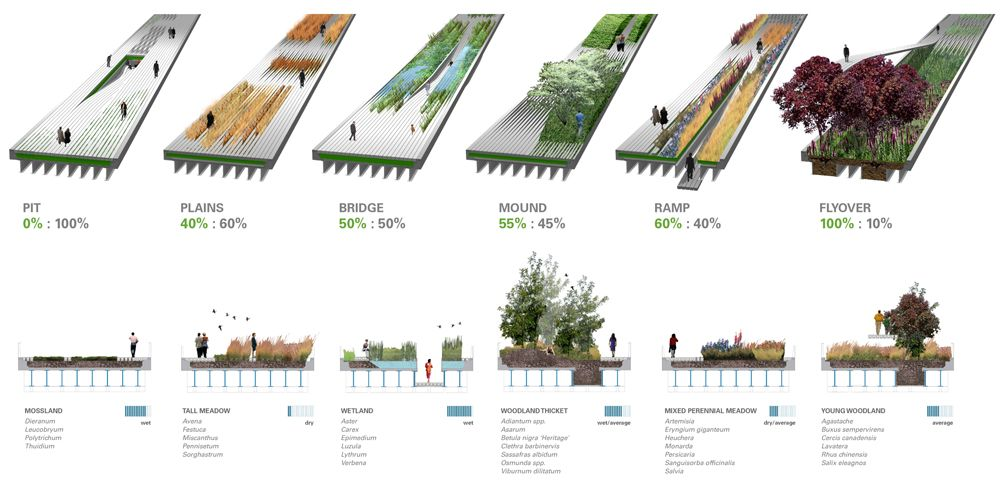 high line vegetation analysis archiculture landscape. Black Bedroom Furniture Sets. Home Design Ideas