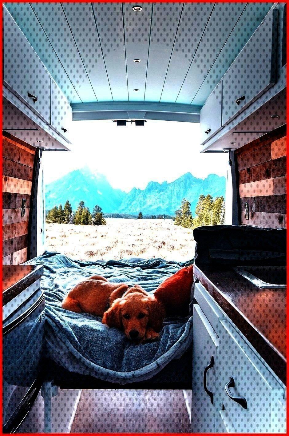 Bus Campers Brilliant 10 Amazing School Bus Campers www camperlife co  The very l10 Amazing School