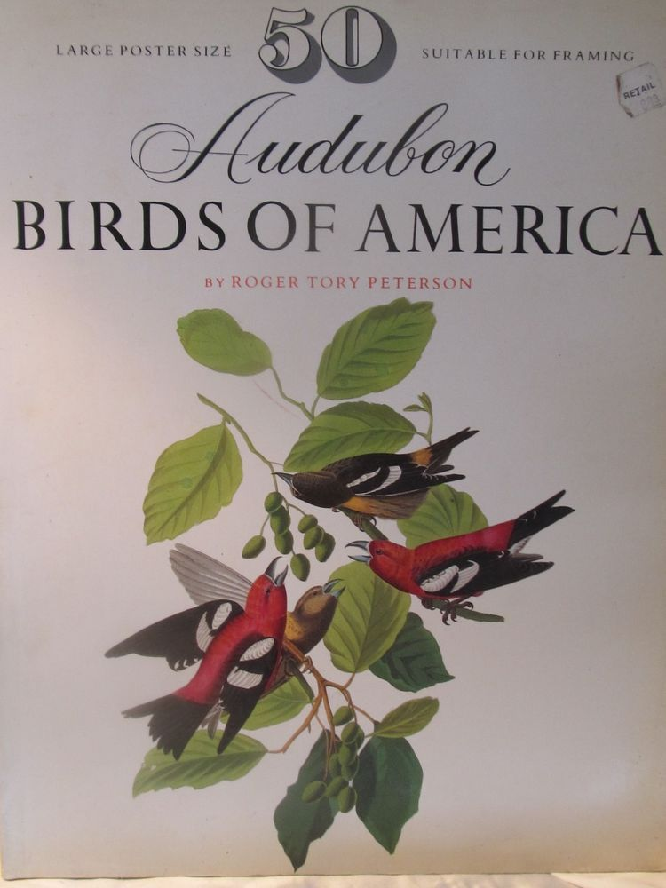 Audubon Birds Of America Book 50 Large Poster Size Roger Tory Peterson