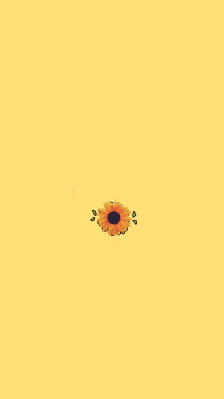 Sunflower Simple Flower Yellow Inspo Iphone Wallpaper Yellow Sunflower Wallpaper Yellow Wallpaper