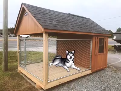 Dog Houses Leonard Buildings Truck Accessories Video Video Diy Dog Kennel Outdoor Dog House Pallet Dog House