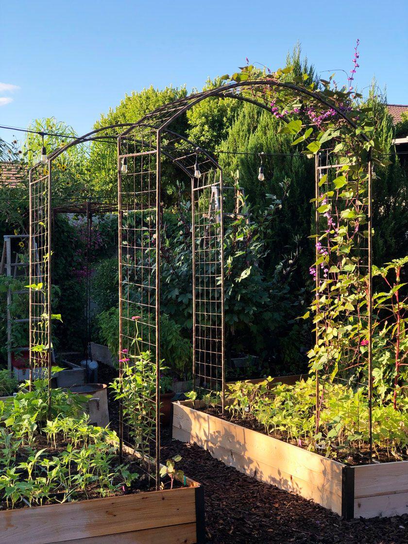 Deep Root Cedar Raised Beds 4 Ft   Cedar Raised Garden Beds