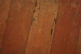 Termite Damage To Hardwood Floors Elegant Of Holes In Wood Floor