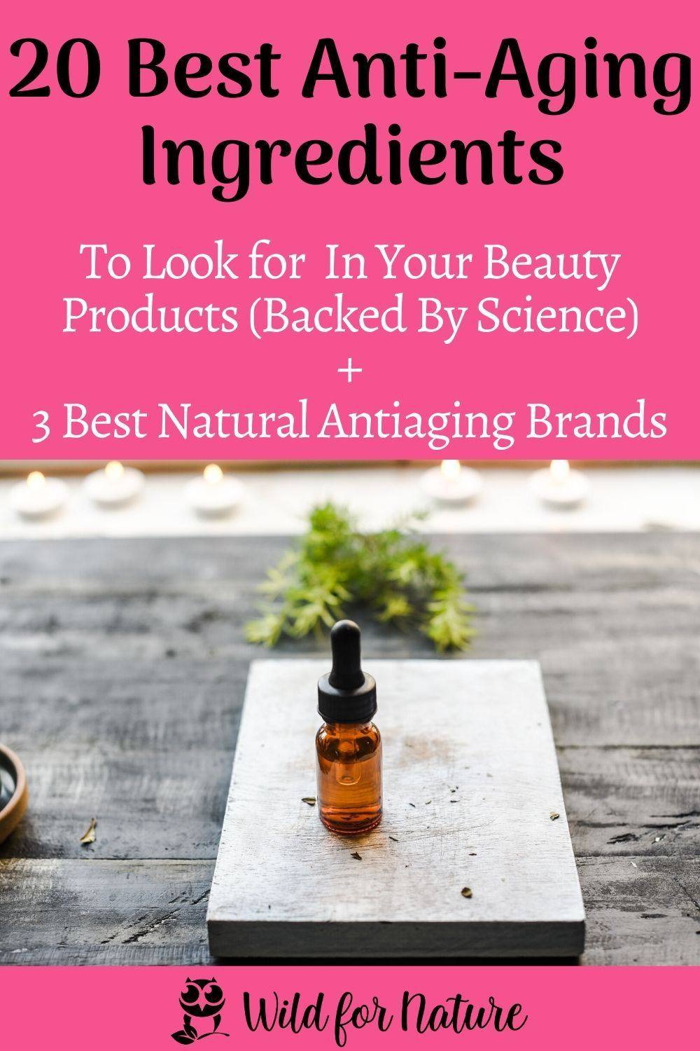 20 Best Anti Aging Skin Care Ingredients Backed By Science In 2020 Anti Aging Ingredients Best Anti Aging Anti Aging Skin Products