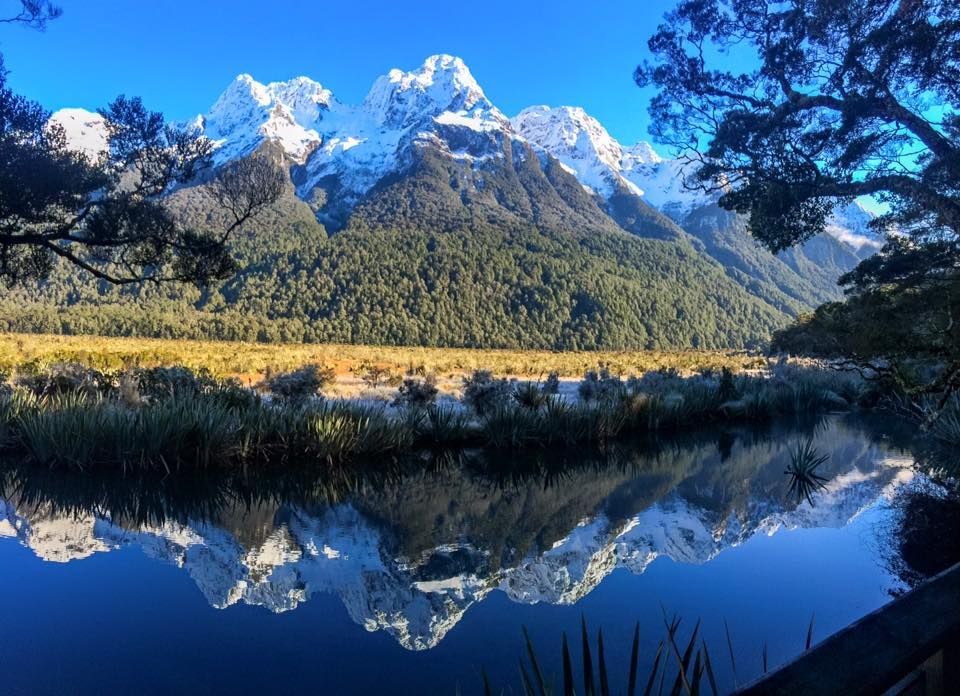 New Zealand Must Do: Milford Sound | Milford Sound | New Zealand | Blog |  Milford sound, Milford, Mirror lake