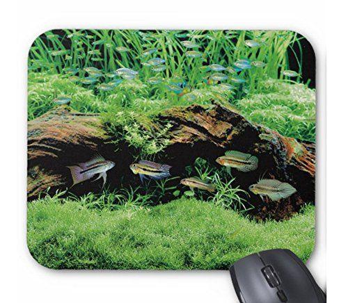 アピストグラマたちと水草レイアウトのマウスパッド:フォトパッド( 世界の熱帯魚シリーズ ) 熱帯スタジオ http://www.amazon.co.jp/dp/B014QVZTB8/ref=cm_sw_r_pi_dp_dXodwb0A3D072