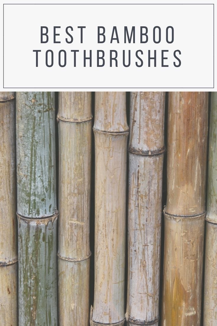 7 Best Bamboo Toothbrushes in the UK PlasticFree