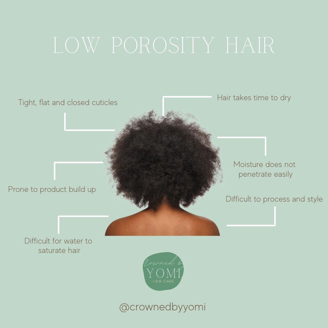 Low Hair Porosity