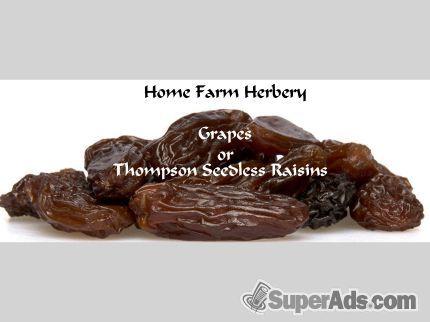Jumbo Thompson Seedless Raisins, Order now, FREE shipping in Colorado CO - Free Colorado SuperAds