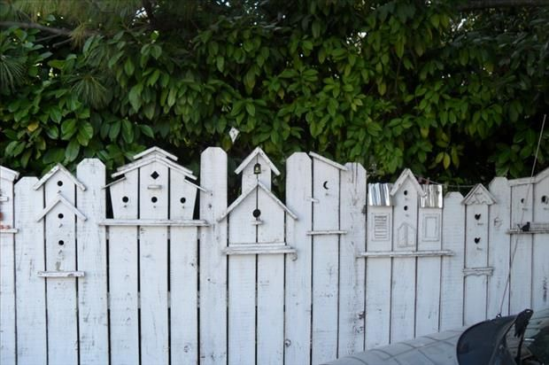 great idea for the fenceposts! make birdhouse designs | Cool Stuff on squirrel fence, bird fence, elephant fence, planter fence, mirror fence, animal fence, bear fence, tree fence, circular fence, bench fence, art fence, cottage fence, slave fence, bicycle fence, pumpkin fence, brush fence, painting fence, reclaimed old wood fence, animated picket fence, bunny fence,