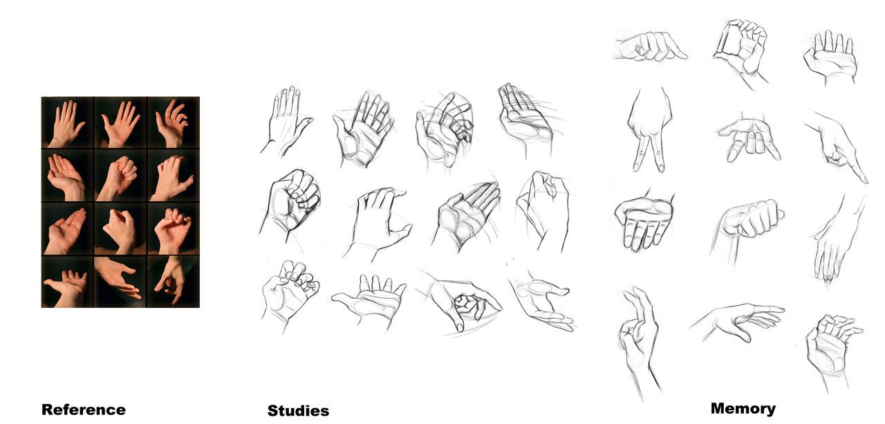 Studies Hands by Reffelia