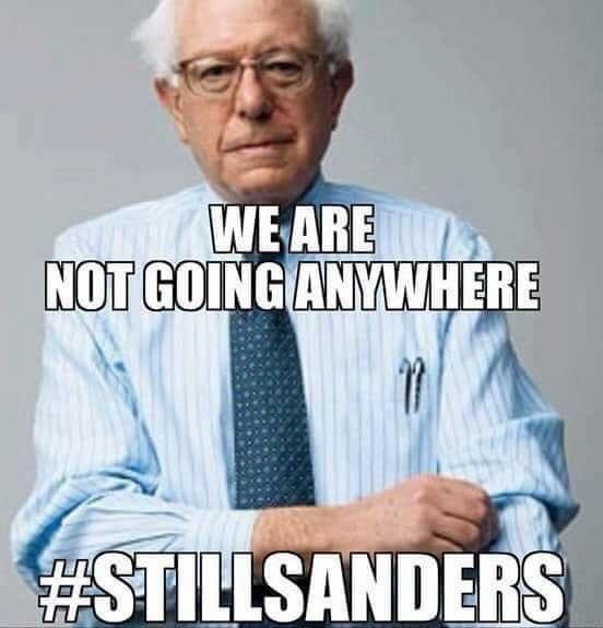 Pin By Rebecca Comunale On Bernie Sanders 2020 In 2020 Bernie Sanders Bernie Sanders For President Impeach Trump