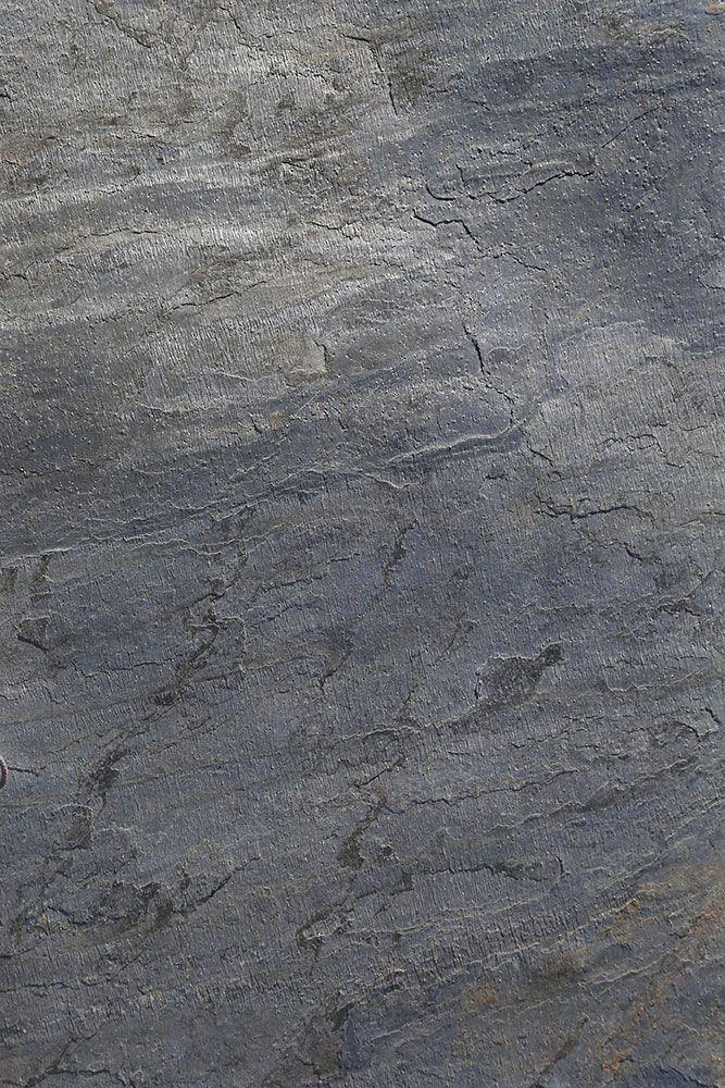 Пин от пользователя Axolotl на доске Axolotl Stone