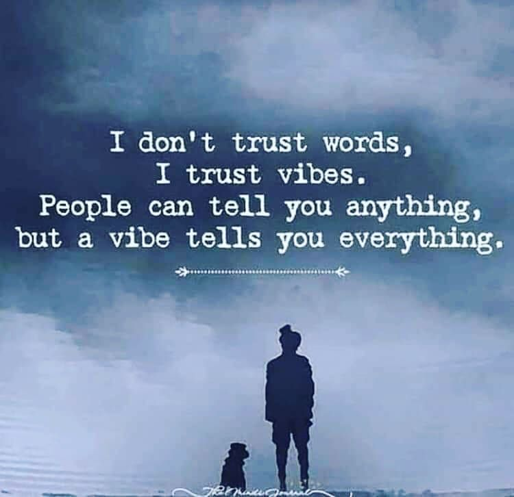 """Veenus & Co.'s Instagram post: """"This says it all... #trust #love #believe #life #peace #hope #truth #motivation #instagood #spiritual #happy #wisdom #spirituality #soul…"""""""
