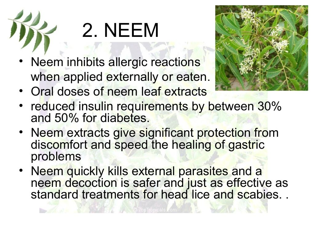 2  NEEM • Neem inhibits allergic reactions when applied