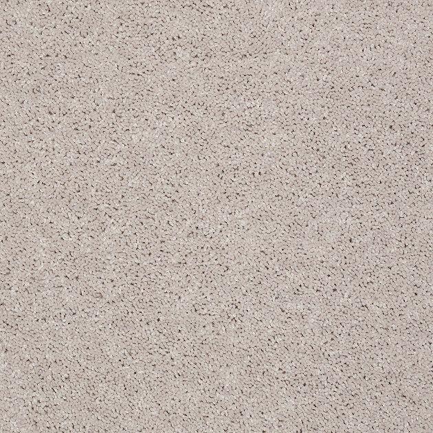 Moon Beam Carpet Samples Shaw Carpet Carpet