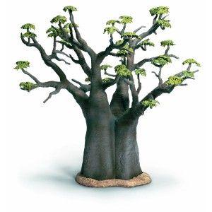 Bonsai Baobab. Jenis tanaman bonsai terbaik untuk percantik rumah