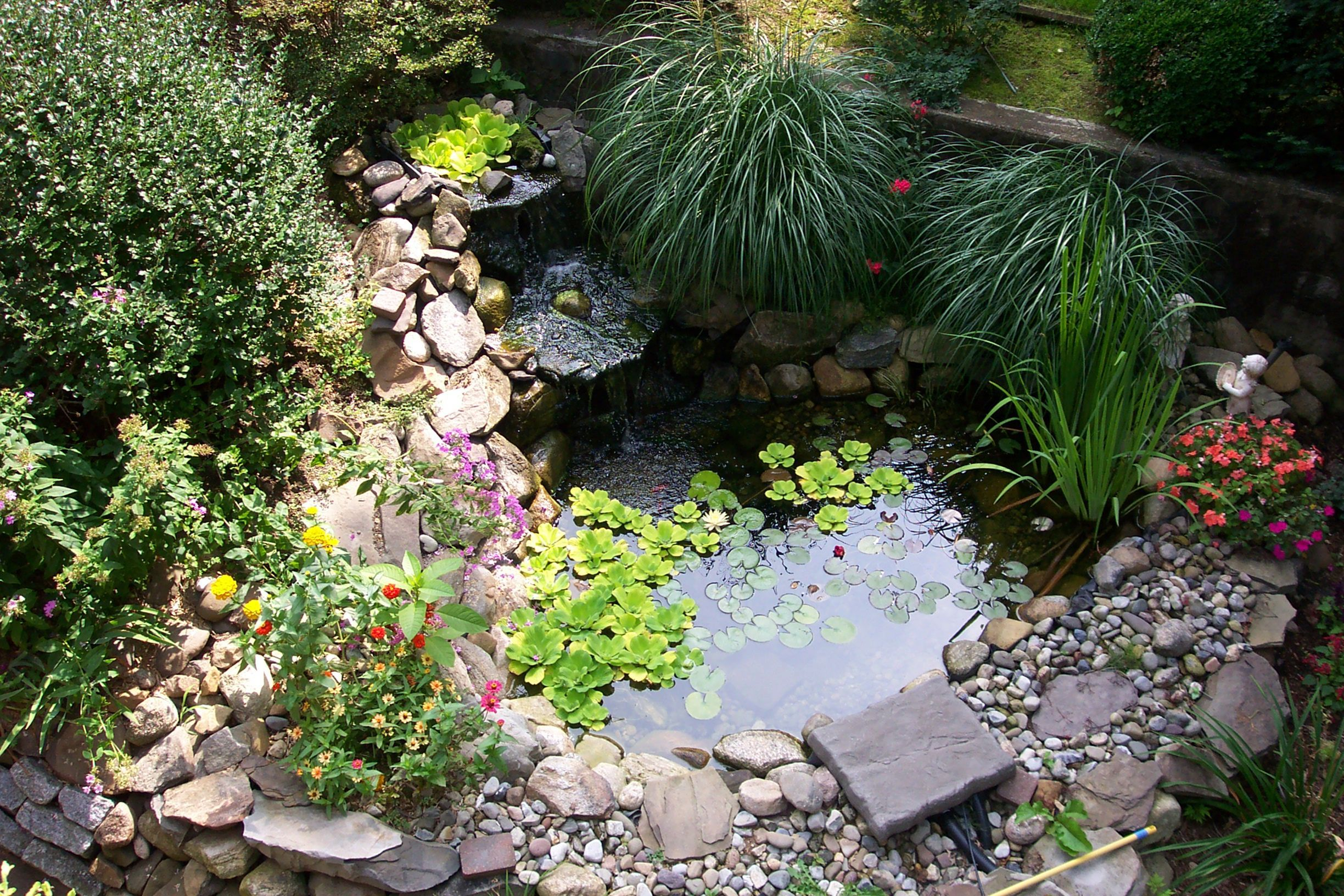 beautiful minimalist fish pond design for your home plants