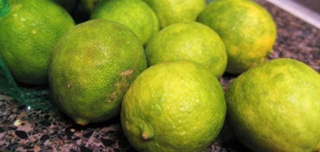 كيفية زراعة الليمون How To Grow Lemon Fruit Lemon