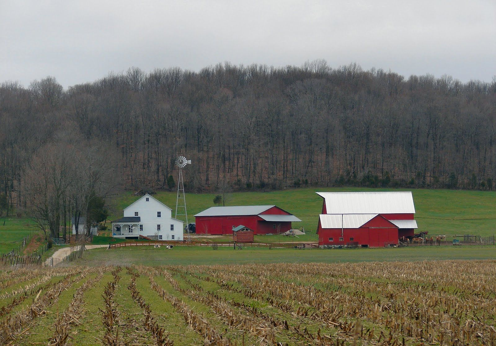 A farm in Putnam county, Indiana. Amish. | Farms and farm houses ...